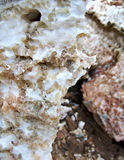 Gypsum. Macro shot of soft mineral calcium sulfate Royalty Free Stock Photo