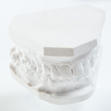 Gypsum model of human jaw on a white background. Royalty Free Stock Photography
