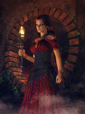 Gypsy girl with a torch. Fantasy gypsy girl in a red dress with a torch Royalty Free Stock Image