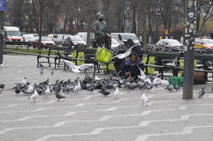 GYPSY WOMAN FEEDS FOOD TO PIGEONS Stock Photos