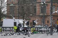 GYPSY WOMAN FEEDS FOOD TO PIGEONS Stock Images