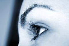 Gyrls Eye - perspective focus. Macro; Focus on pupil. Blue Tones Stock Photos