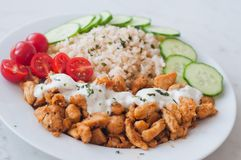 Gyros chicken with rice, tzatziki dressing and vegetables Royalty Free Stock Image