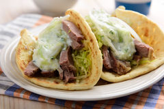 Gyros with meat and tzatziki Royalty Free Stock Photos