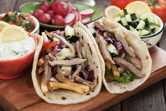 Gyros pita wrapped sandwich Royalty Free Stock Photos