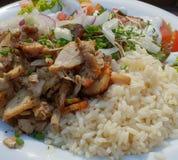 Gyros Rice stock image