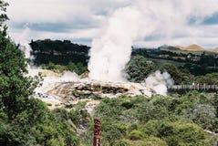 Gyser termal en Nueva Zelanda Foto de archivo