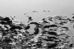 Gyttja i vatten Arkivfoton