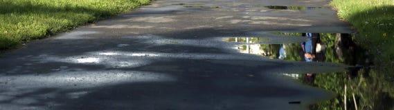 Gyttja och pölar på grusvägen arkivbild