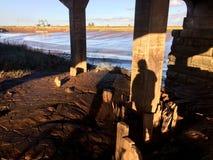 Gyttja under bron Arkivfoto