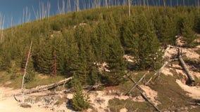 Gyttjakrukor i Yellowstone lager videofilmer