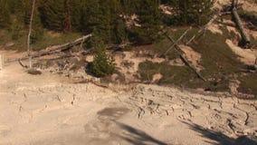 Gyttjakrukor i Yellowstone stock video