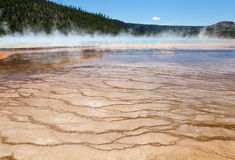 Gyttjalägenheter, Yellowstone Royaltyfri Bild