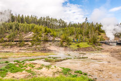 Gyttjavulkan i den Yellowstone nationalparken Royaltyfri Fotografi