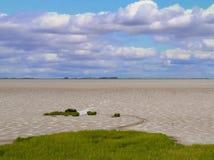 Gyttjiga landremsor i breda flodmynningen på ljus dag Royaltyfri Fotografi