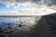 Gyttjiga landremsor i Waddenzeen på Texel, Nederländerna Fotografering för Bildbyråer