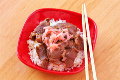 Gyudon. Beef Bowl. Japanese Dish. Royalty Free Stock Photography