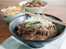 Gyudon and Buta Don: Japanese beef or pork and rice bowls with salad. Closeup of Gyudon and Buta Don: Japanese beef or pork and rice bowls with salad Stock Photos