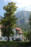 Há as árvores que são mais altas do que as montanhas Imagem de Stock Royalty Free