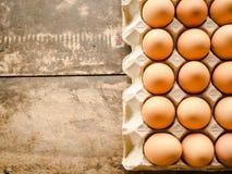 Há muitos ovos imagem de stock
