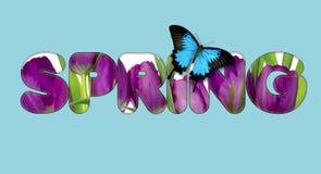 Há um texto das flores na primavera Fotografia de Stock