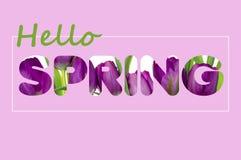 Há um texto das flores na primavera Fotografia de Stock Royalty Free