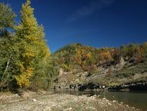 Hábitat del río Fotografía de archivo