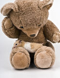 Hámster que se sienta en un oso de peluche marrón Imágenes de archivo libres de regalías