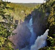 Hällingsåfallet con il canyon Fotografie Stock Libere da Diritti