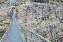 HängebrÃ-¼ cke über dem Aletsch-Gletscher, die Schweiz Lizenzfreies Stockfoto