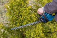 Häckbräm, arbeten i en trädgård Royaltyfri Foto