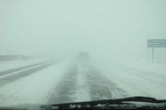 häftig snöstorm Fotografering för Bildbyråer