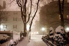 häftig snöstorm boston Arkivbilder
