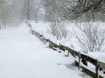 häftig snöstorm februari Arkivbilder