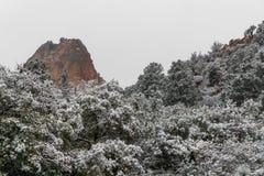 Häftig snöstorm på trädgården av gudColorado Springs de steniga bergen arkivfoton