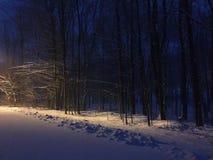 Häftig snöstormmorgon arkivbild