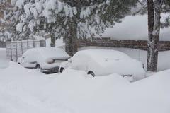 häftig snöstormvinter royaltyfri bild