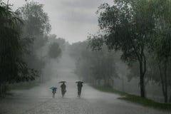 häftigt regn Royaltyfri Foto