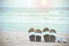 Häftklammermatare av familjen på stranden och havet som backgrounen royaltyfria bilder