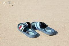 Häftklammermatare i sanden Fotografering för Bildbyråer