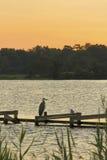 Häger och seagull på pir Royaltyfria Bilder