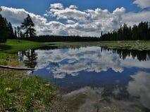 Hägerdamm, storslagen Teton nationalpark, Wyoming royaltyfri bild