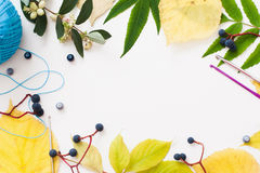 Häkeln Sie Zubehör- und Blattrahmen, freien Raum Stockbilder