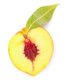 Hälft av nektarinfrukt Arkivbild