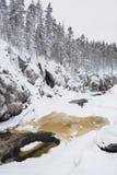Hälft-fryst flod i kanjon royaltyfri foto