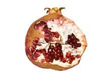 Hälfte des Granatapfels auf weißem Hintergrund Stockfoto