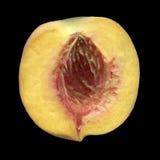 Hälfte des reifen Pfirsiches, Löcher gebildet Stockbild
