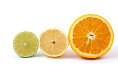 Hälften der Orange, der Zitrone und des Kalkes Stockbilder