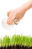 hälla för gräs Arkivbild
