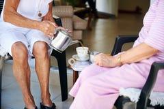 Hälla hennes långa borttappade vän något te Fotografering för Bildbyråer